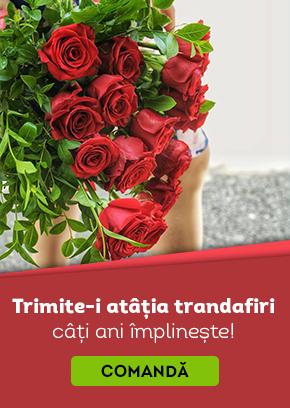 Comanda-i trandafiri