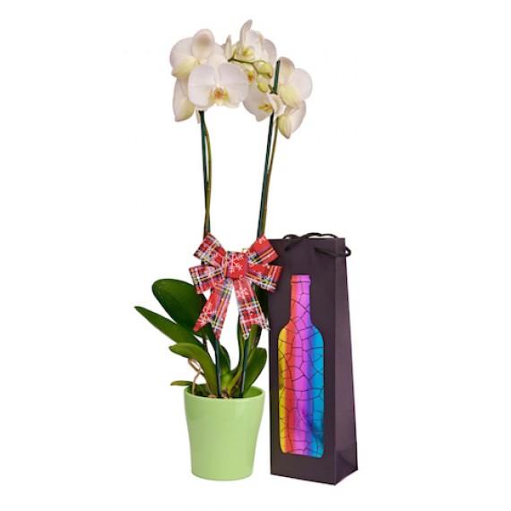 Aranjament Orhidee Alba si Sticla de Vin