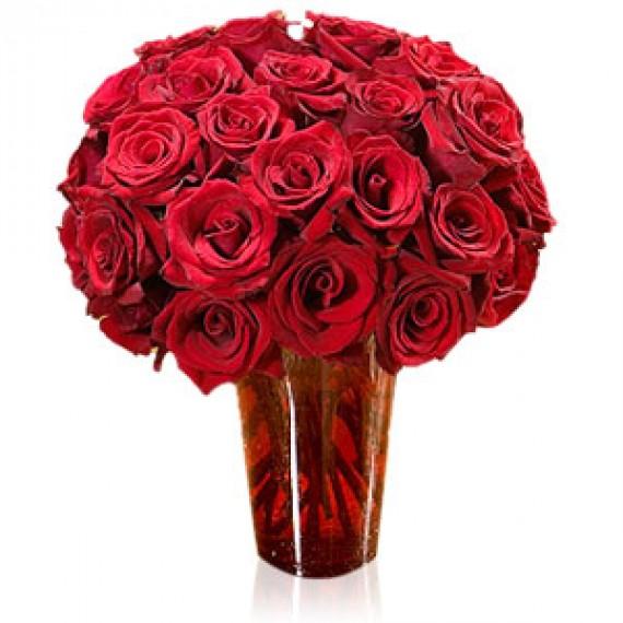 37 Trandafiri