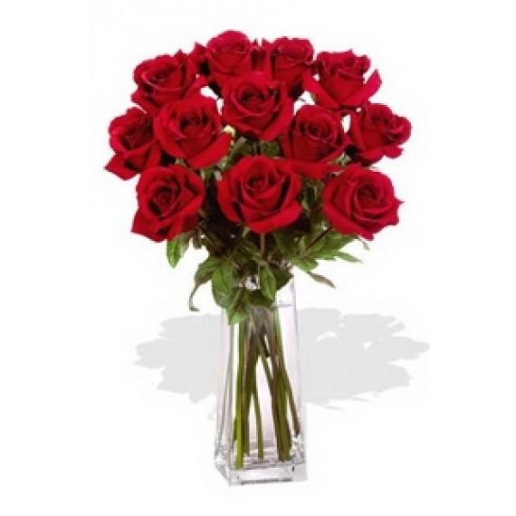 Petale Rosii de Trandafiri