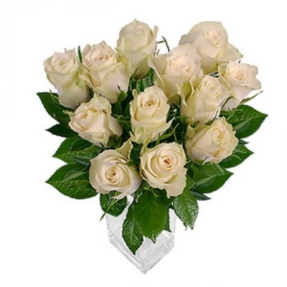 11 Trandafiri Albi