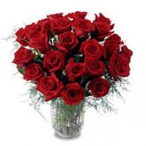 17 Trandafiri