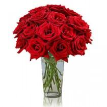 35 Trandafiri