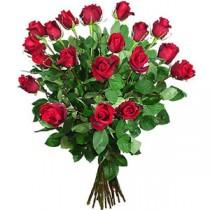 21 Trandafiri