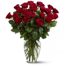 27 Trandafiri