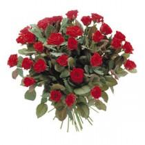 31 Trandafiri
