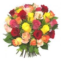 37 Trandafiri Colorati