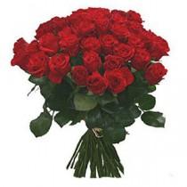 47 Trandafiri