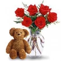 7 Trandafiri si o jucarie de plus