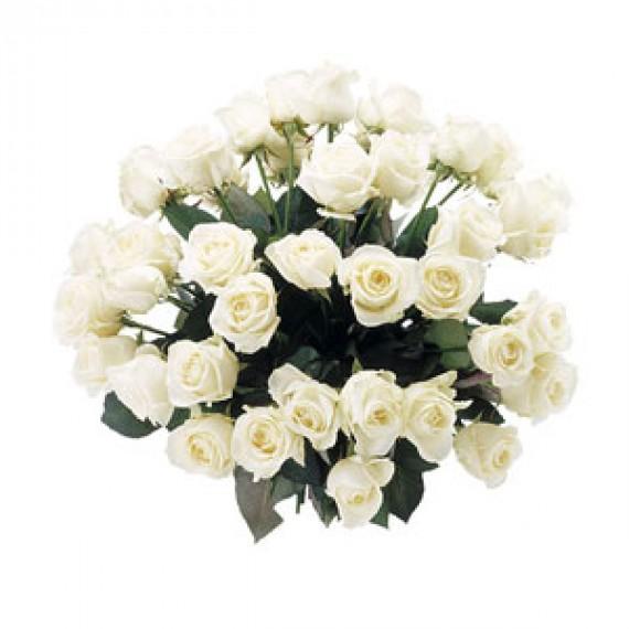 Buchet de 35 Trandafiri Albi
