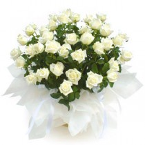 Aranjament 39 de trandafiri albi