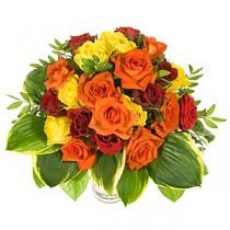 Trandafiri in Culori