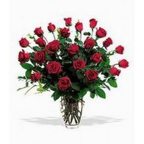 19 Trandafiri