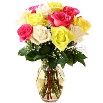 Trandafiri in culori variate