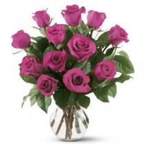 Splendoare Roz