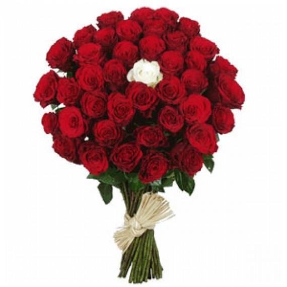 41 Trandafiri